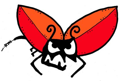 bugs-hawkwaspcolwb.jpg